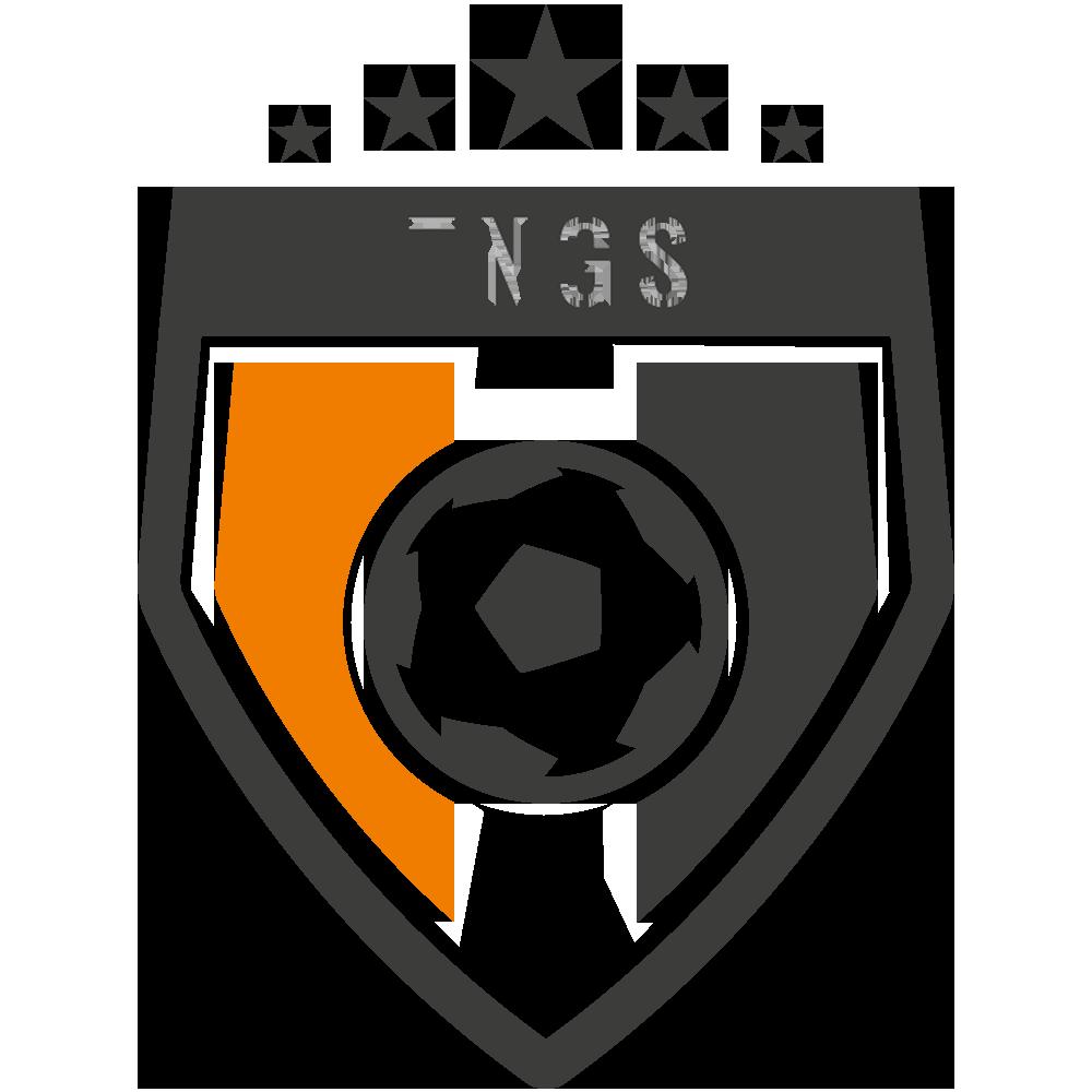 TNGS FOOTBALL ACADEMY